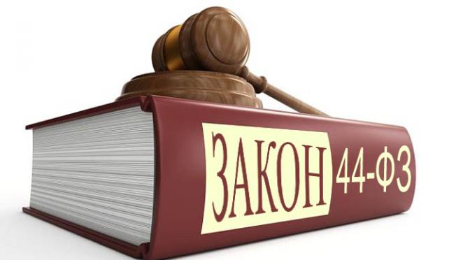 Экспертиза по закону о госзакупках (№ 44 — ФЗ)